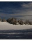Paysage-de-neige-Culin__DSC24550004