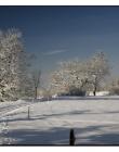 Paysage-de-neige-Culin__DSC24650005