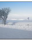 Paysage-de-neige-Culin__DSC24920008
