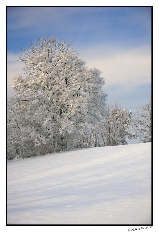 Paysage-de-neige-_DSC23220003