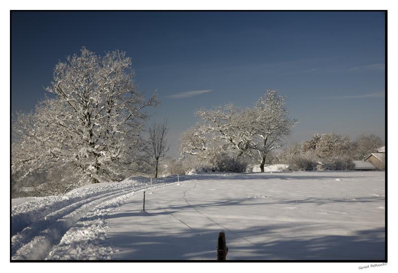 Paysage-de-neige-_DSC24650005