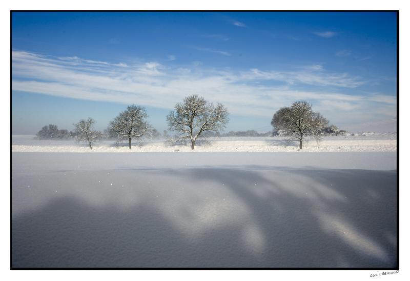 Paysage-de-neige-_DSC24860006