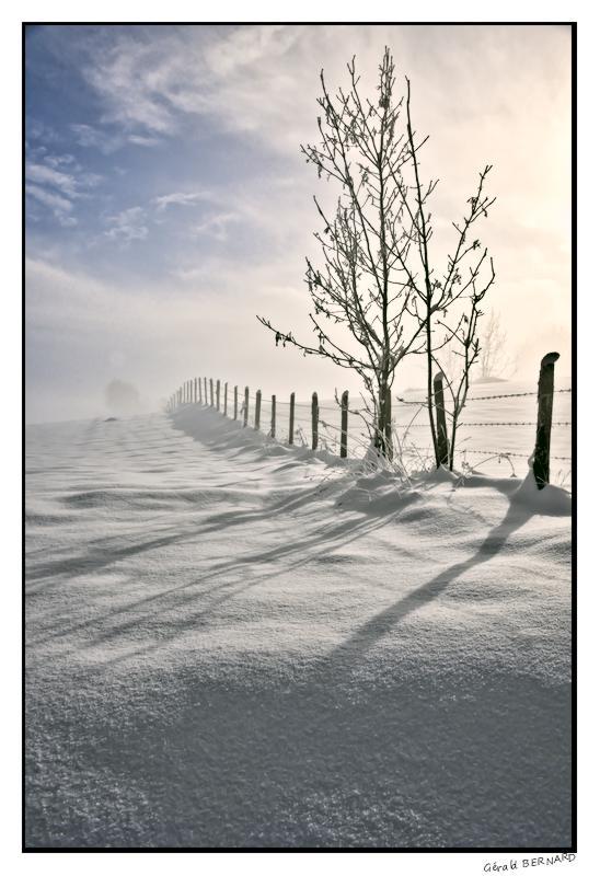 Paysage-de-neige-_DSC24950009