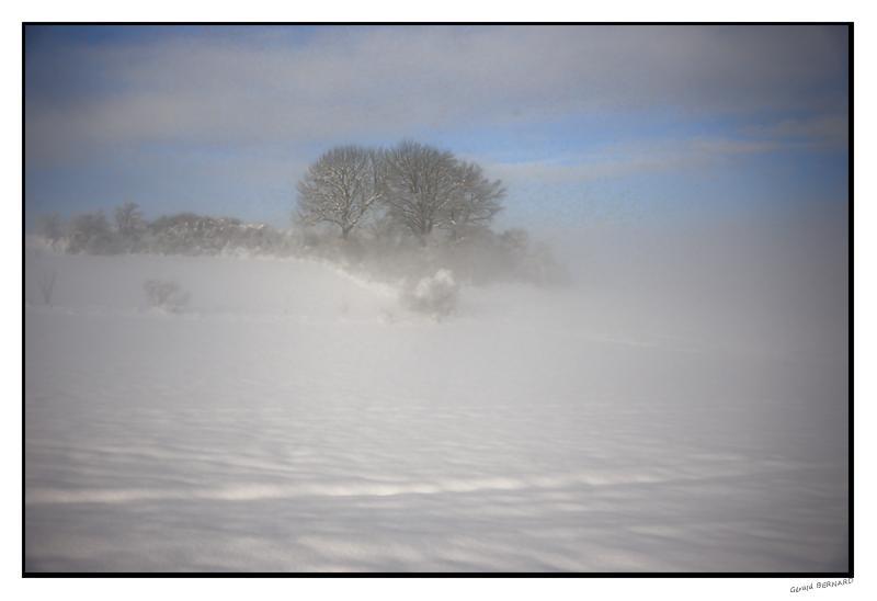 Paysage-de-neige_DSC23050001