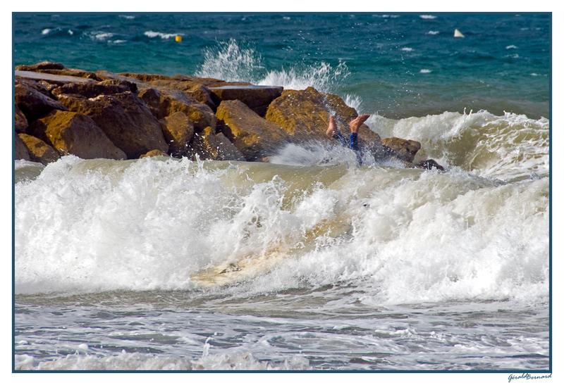 pied-surf_dsc2180